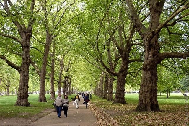 grin-park-london-18