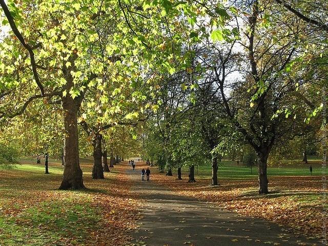 grin-park-london-20