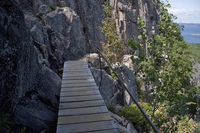 precipice-trail-acadia-08