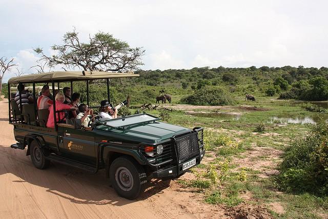 top10-safari-natsionalnyij-park-chobe-1
