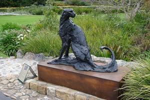 Сад Кирстенбош в ЮАР