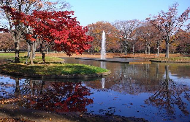 yoyogi-park-17