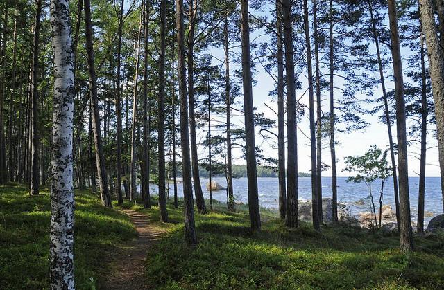natsionalnyi-park-lahemaa-03