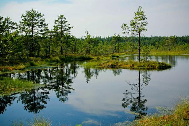 natsionalnyi-park-lahemaa-17