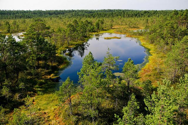 natsionalnyi-park-lahemaa-18