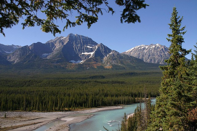 icefields-parkway-06