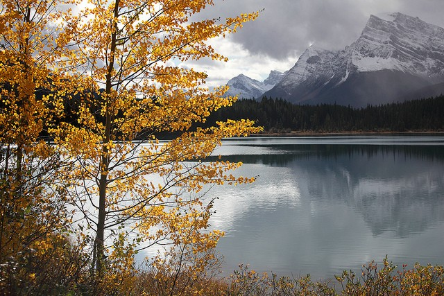 icefields-parkway-11