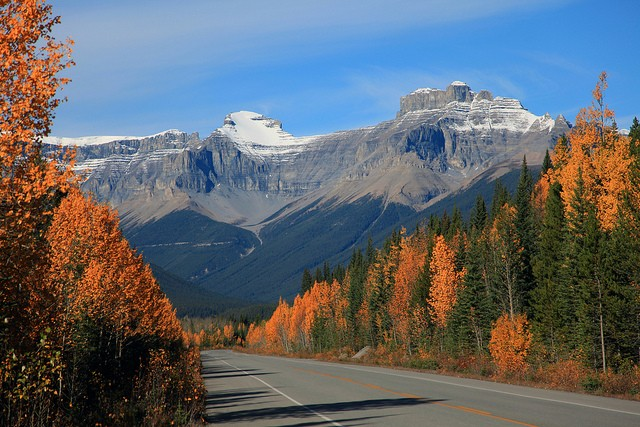 icefields-parkway-18