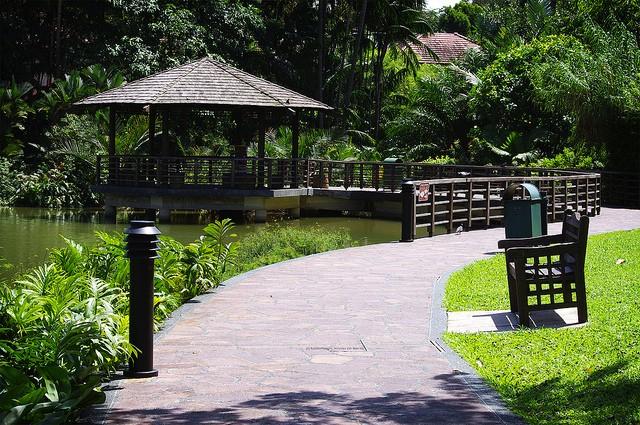 singapurskij-botanicheskij-sad-07