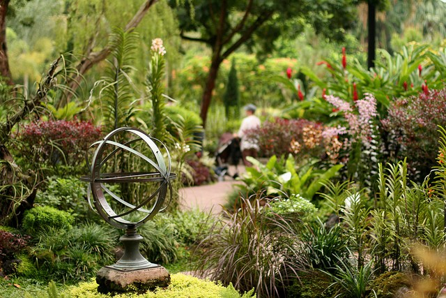 singapurskij-botanicheskij-sad-08