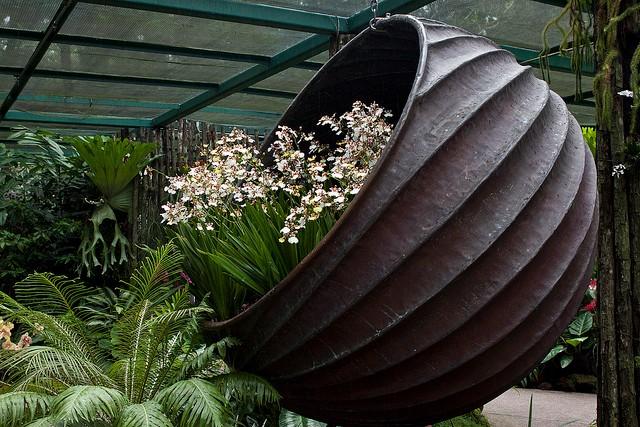 singapurskij-botanicheskij-sad-12