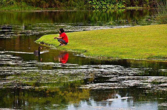 singapurskij-botanicheskij-sad-15