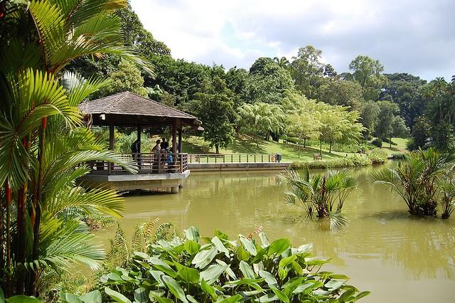 singapurskij-botanicheskij-sad-18