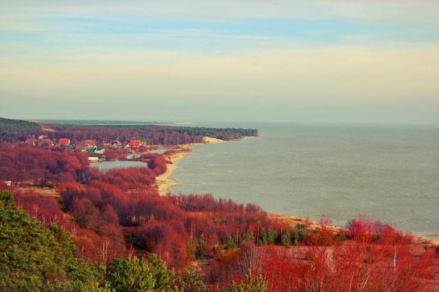 kurshskaya-kosa
