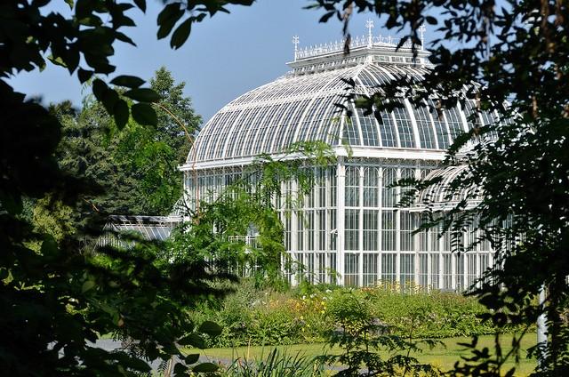botanicheskiy-sad-helsinki-20