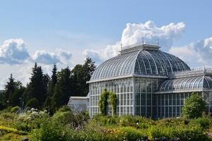 Ботанический сад в Хельсинки