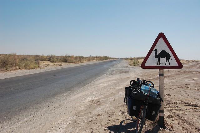 Пустыня Каракум фото