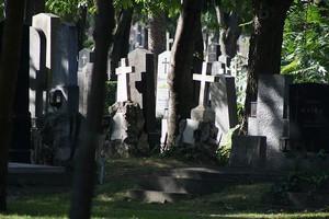 Центральное кладбище в Венe