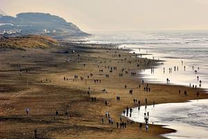 Пляж Оушен-Бич в Калифорнии