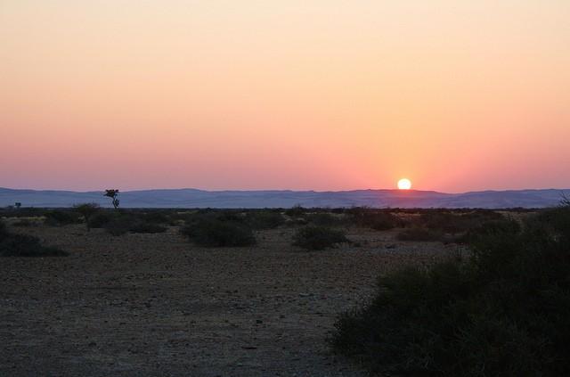 pustynya-namib-20