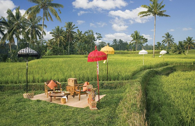 ubud-hanging-gardens-10