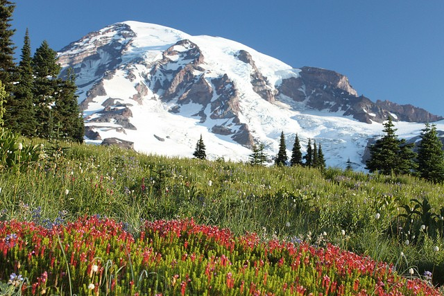 mount-rainier-national-park-02