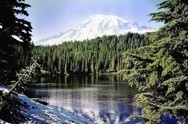 mount-rainier-national-park-07