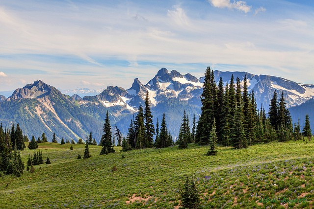 mount-rainier-national-park-10
