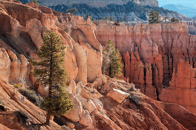 bryce-canyon-14