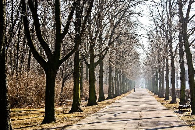 park-bolshoi-tirgarten-15
