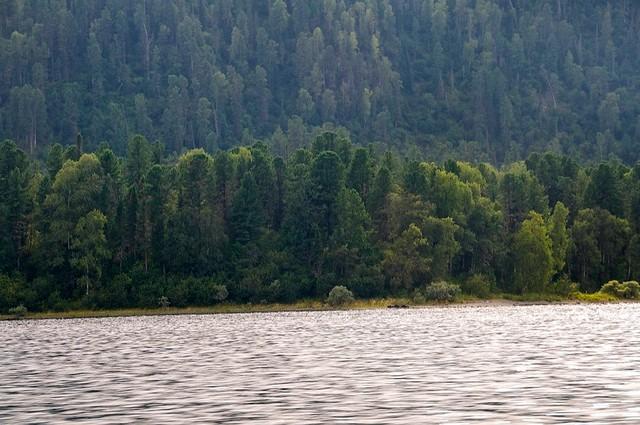 Телецкое озеро базы отдыха