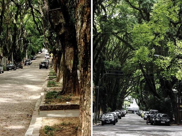 ulitsa-rua-gonsalu-de-karvalo-03