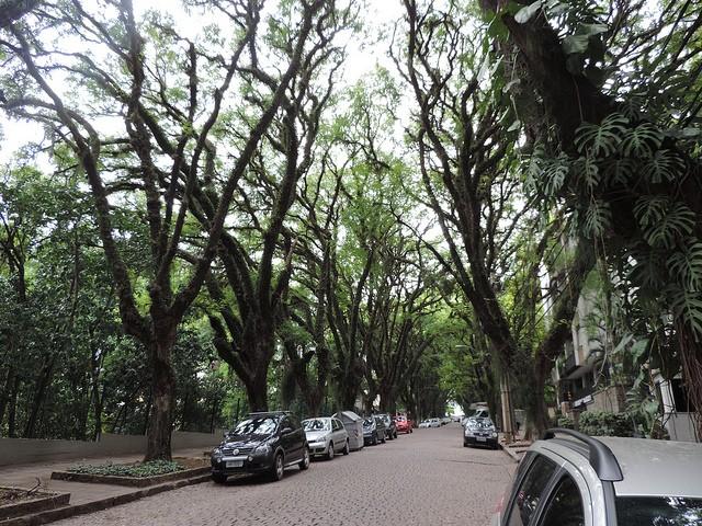 ulitsa-rua-gonsalu-de-karvalo-09