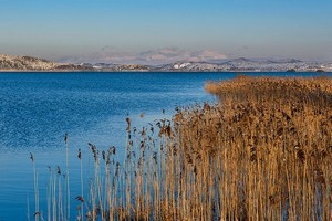 Озеро Церкница в Словении