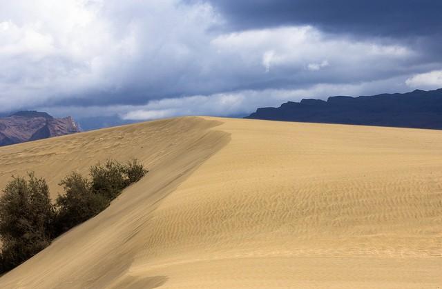 дюны маспаломаса происхождение